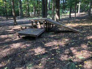 Carolina Pines Dog Park in Raleigh, NC