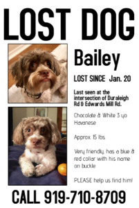 Lost dog poster example from pet sitters in raleigh